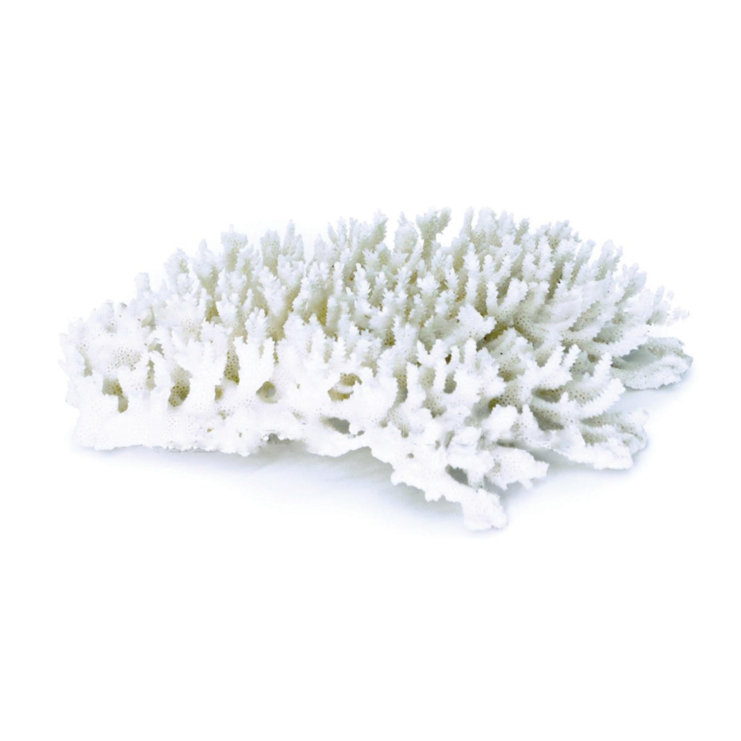 UDeco Branch Coral