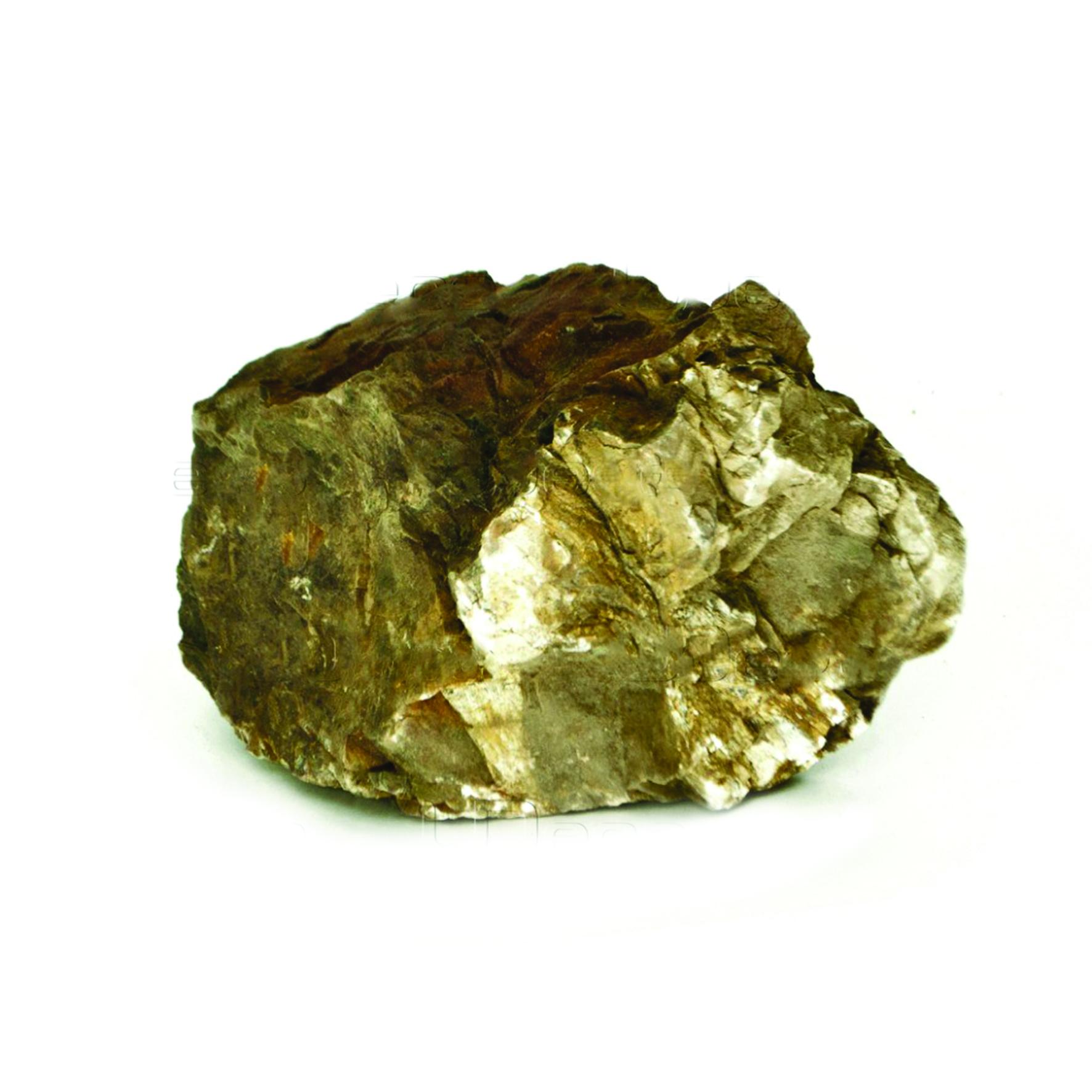 UDeco Fossilized Wood Stone