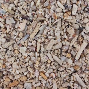 Sea Coral 11-30 мм